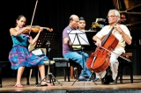 A classical trio, a concert to delight
