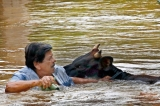 Human kindness is not drowned