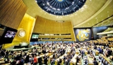 UN exemptions make mockery of sexual abuse in world body