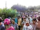 Cash crop or villain? Palm oil expansion debate rages