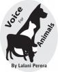 Animal cruelty laws need immediate reform