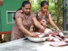 From Impoverished to Empowered: Sri Lankan women adopt modern biomass technologies