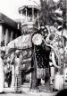 Beloved Raja who swayed to the beat of the 'gajaga vannama'