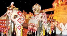Kandy in festive mood