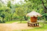 Organic culinary experience at Cinnamon Lodge Habarana