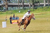 Ceylon Riding Club summer horse on Sept. 22