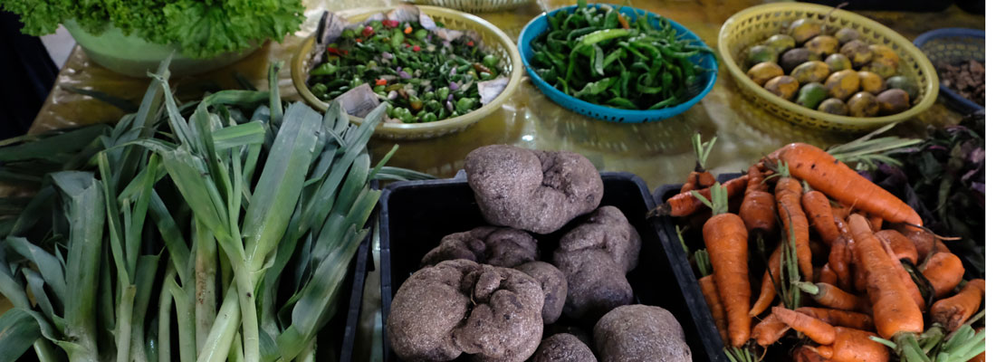 Getting to the roots of going organic in SL