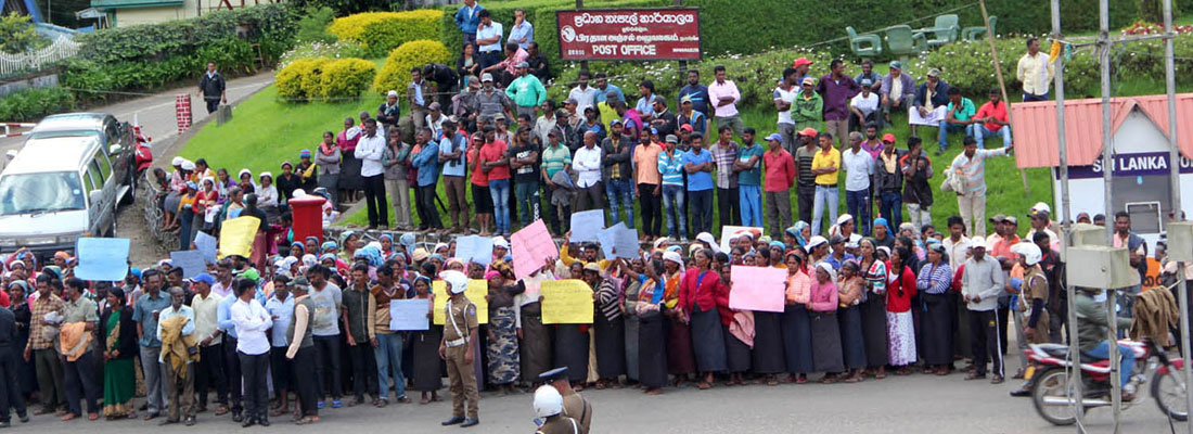 Wage demands over tea leaves industry stewing
