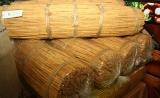 Peeling practices hinders growth of SL's cinnamon industry