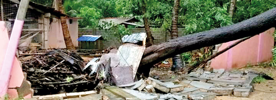 Relief in battered north as cyclone moves away