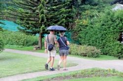 Tourist arrivals drop