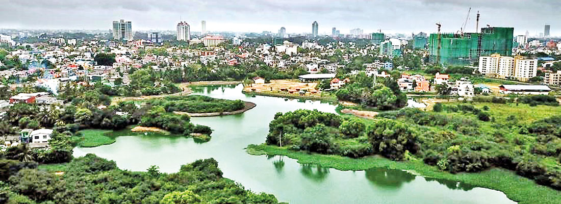 What's next now that Colombo's an official Wetland City?