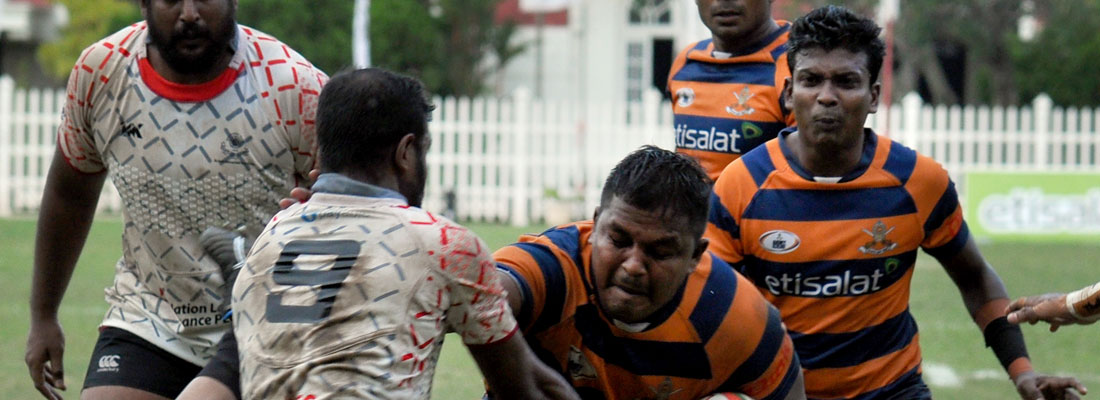 The saga of monkey  tricks and rugby rules