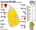 Forest fires double but dept. forced  to leave areas unguarded
