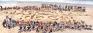 Fortude and Sandbox create Sri Lanka's largest sand sculpture