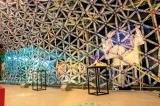 'Crystalline' wonder  of 40,000  plastic bottles