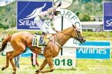 Thoroughbreds to storm Nuwara Eliya tracks again