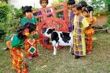 Avurudu celebrations at Little Angels AMI Montessori