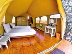 'Wild Glamping Knuckles'
