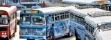 Bus drivers – the other terrorists on the prowl