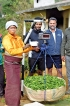 Technology to tackle fraudulent weighing techniques in tea estates