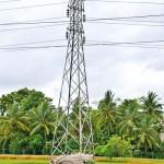 Farming with high tension Sent by Upali Gangoda Nikon D3100