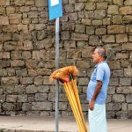 Colombo: New brooms stand tall