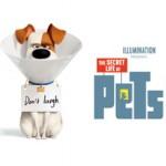 pets-1080x793-5be3683f0ba23-1