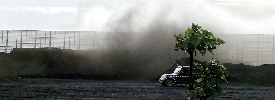 Old King Coal to rule Lanka's power future