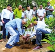 Endana Nature Corridor's  second phase takes root