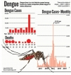 Dengue on the rampage