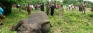 Three more elephants found dead at National Park , Thandikulam