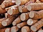 Sri Lanka's cassava generates FDI venture