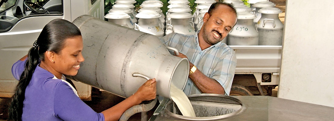 Industry stakeholders urge formulation of national milk production policy