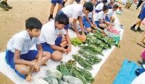 School children participated in a fair