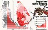 Jaffna's 500pc dengue increase sends control chief north