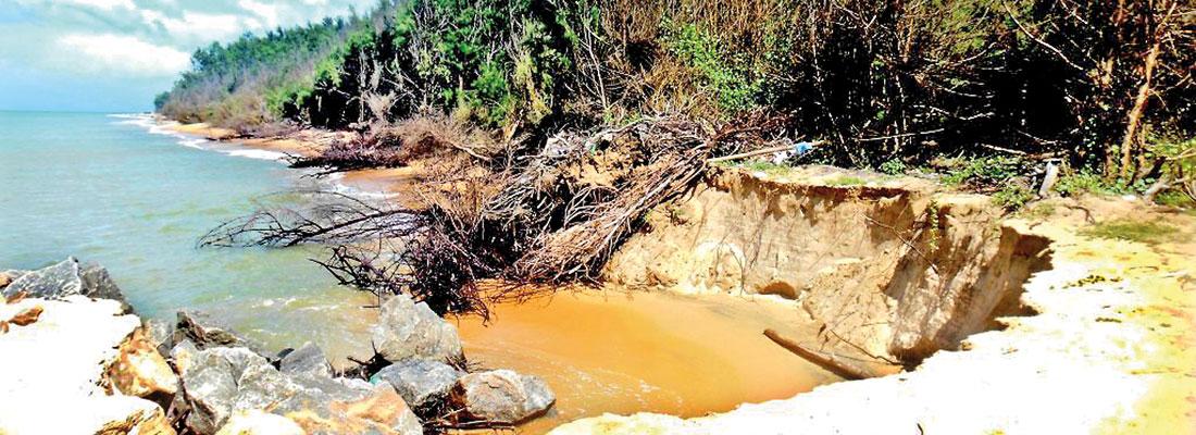 Worsening sea erosion on Kalpitiya beach could hit tourism
