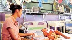 Red alert for new  strain of dengue