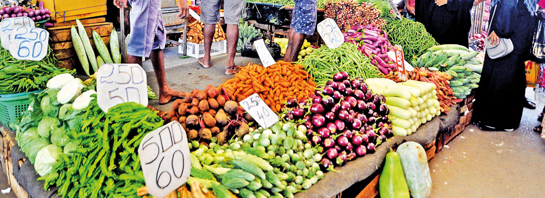 Trucks from Jaffna signal long- awaited drop in veggie prices