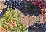 Spice industry needs state boost, says industry expert