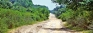 'Stop roads through NPs to mitigate climate change'