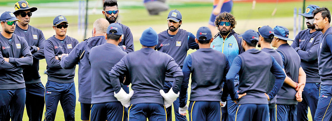 Cricketers set to resume training on Friday