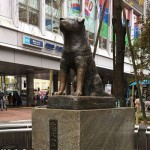 The statue of Hachiko, known as the most loyal dog in history, can be found in front of the  Shibuya Station in Tokyo