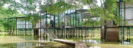 Stark house on stilts
