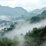 Neluwa: Misty mountains