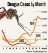 Deadly little upward curl  in dengue  cases detected