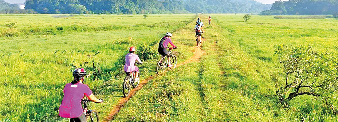 Mud Bunnies: Cycling for everyone