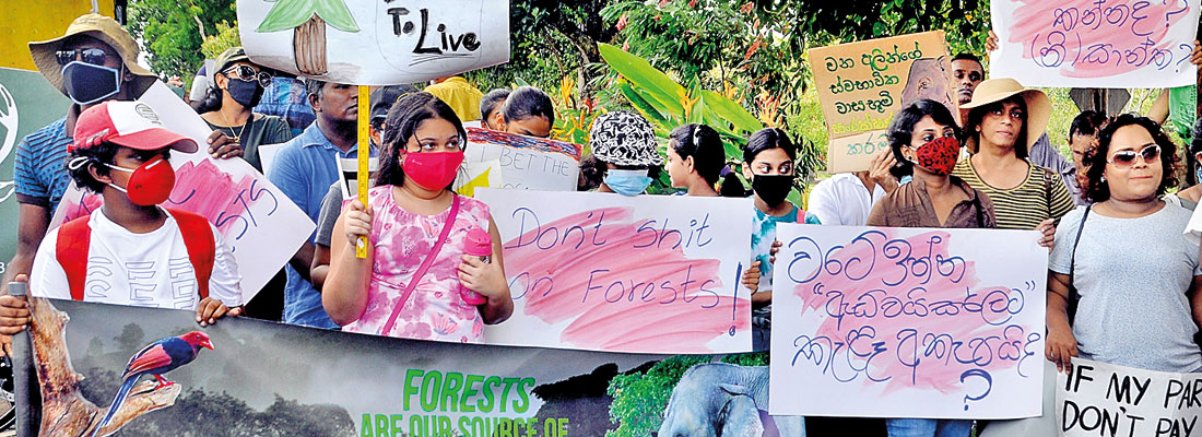 Forest destruction alarm raised despite official denials