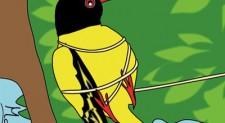The Tangled Bird