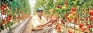 Why modern agricultural technologies fail in Sri Lanka